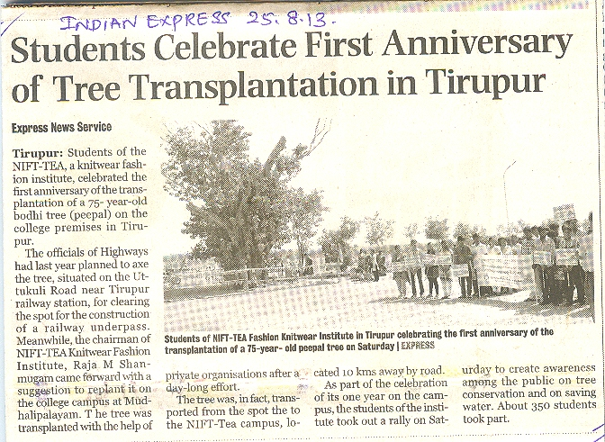 First Anniversary of Tree Transplantation